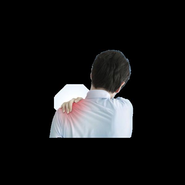 【对外交流】Ergo MSDs职业性肌肉骨骼疾患有可能会进入职业病名录